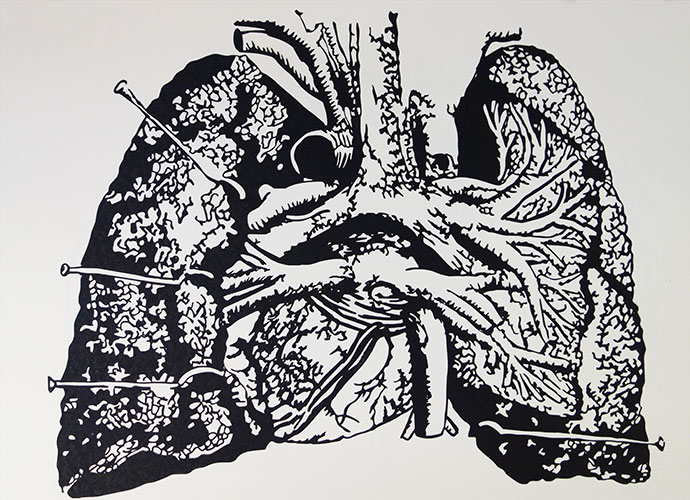 2015 Breath: Paper Cuts: Anatomical Cross-Sections