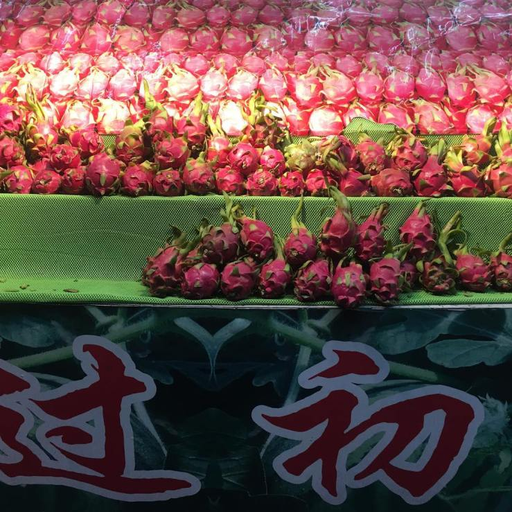 Dragonfruit on shelves