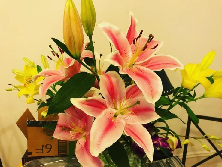 02-flowers